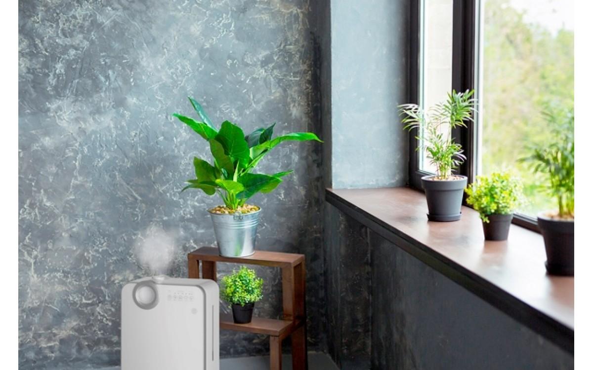 Zatočte se suchým vzduchem u vás doma